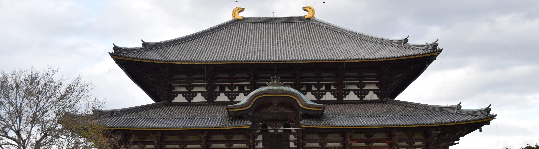 De heilige herten van Nara