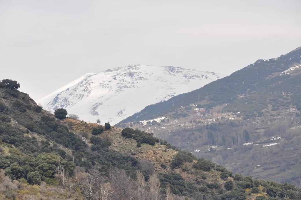 Dag 3: Via Sierra Nevada naar Granada