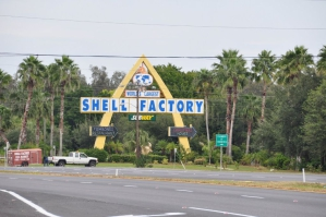 Fort Myers Shell Factory