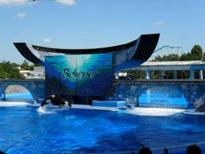 SeaWorld - Shamu in 'Believe'