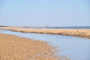 Strand van Matalascañas